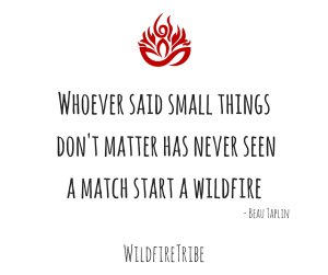 whoever-said-small-things-dont-matter-has-never-seen-a-match-start-a-wildfire.jpg